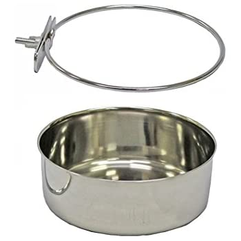 Pet Supplies : Lucky Dog Stainless Steel Double - Fixed