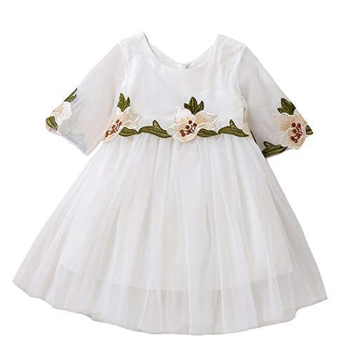 Costume Bébé Fée Petites Filles Moitié Manches Broderie Fleur Taille De Robe De Princesse Tutu 2-3t (blanc) Blanc