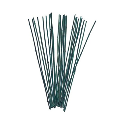 Bond 25 Pack 2 Feet Bamboo Stakes Your Pretty Garden
