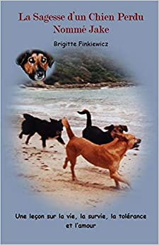 La Sagesse d'un Chien Perdu Nomme Jake: Une lecon sur la vie, la survie, la tolerance et L'amour