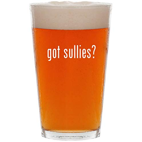 got sullies? - 16oz All Purpose Pint Beer Glass ()