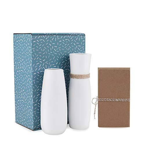 Dvine Dev White Ceramic Vases Table Vase Set of 2 - Snow White Finishing - Gift Box Packaged