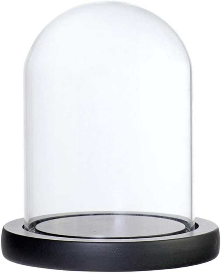 Marr/ón A LOVIVER C/úpula de Vidrio Transparente con Base de Madera Cristal Cloche Adorno Varios Tipos Disponibles