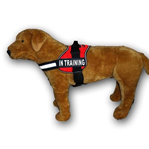 low-cost Service Dog Harness Vest Cool Comfort Nylon for dogs Small Medium Large Girth, Purchase comes with 2 IN TRAINING reflective patches. Please measure dog before ordering