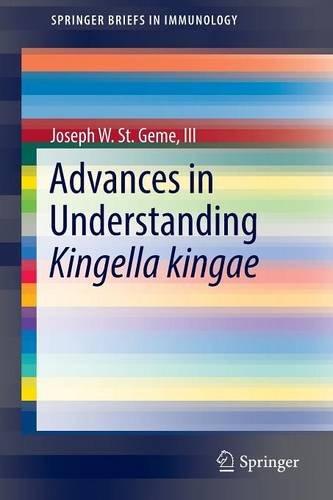 Coloriage Picbille Cp.Download Advances In Understanding Kingella Kingae Springerbriefs