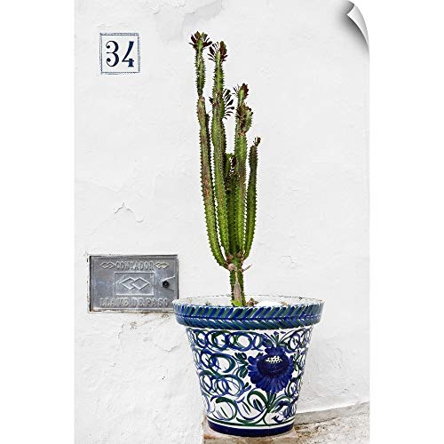 (CANVAS ON DEMAND Made in Spain Collection - Spanish Terracotta Pot & Castus Wall Peel Art Print, 32