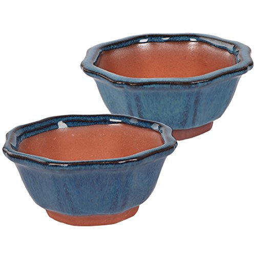 Happy Bonsai Small Glazed Pots, Value Set of 2 + 4 Soft Mesh Drainage ()