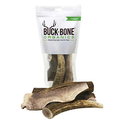 Buck Bone Organics Elk Antler for Dogs, Naturally Sourced from Shed Antler in The USA - 1 LB Bag 2-4 Pieces, Happy Chewing