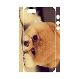 TOSOUL Cell phone Protection Cover 3D Case Pomeranian For Iphone 5,5S