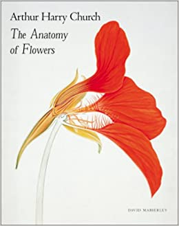 Arthur Harry Church:The Anatomy of Flowers: David Mabberley ...
