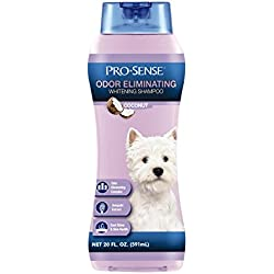 Pro-Sense Odor Eliminating Whitening Shampoo, Coconut Scent, 20-Ounce (P-82724)