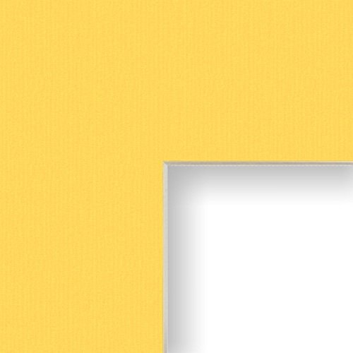 Craig Frames B110 18x24-Inch Mat, Single Opening for 12x18-Inch Image, Buttercup with Cream -