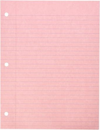 AmazonCom School Specialty  Hole Punched Notebook Filler