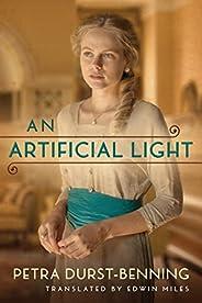 An Artificial Light (The Photographer's Saga Boo