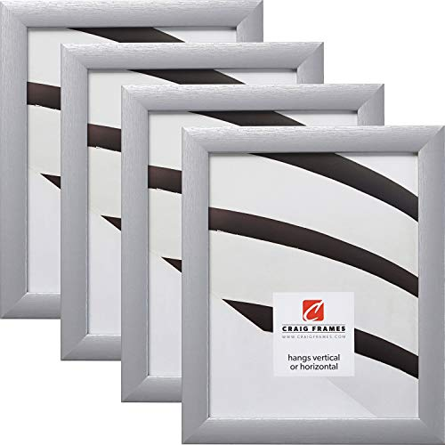 Craig Frames 23247018 24 x 36 Inch Picture Frame, Brushed Silver, Set of 4