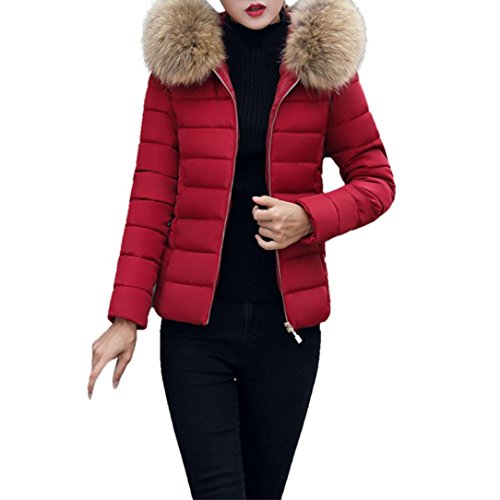 Fashion Solid Women Casual Thicker Parka Winter Slim Down Jacket Coat Overcoat With Hood Fur (Wine Red, 2XL)