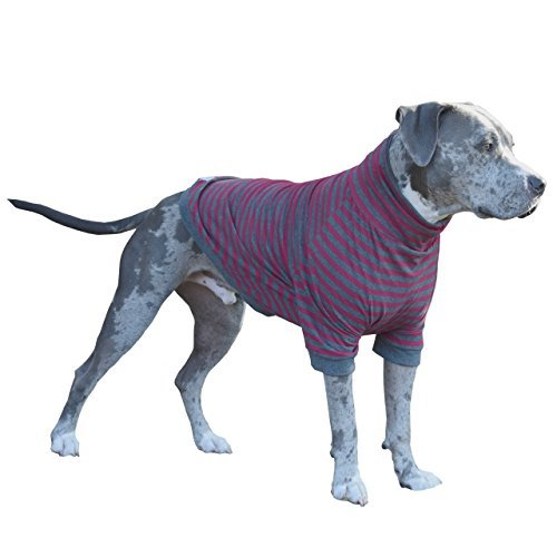 Tooth & Honey big dog/stripe shirt/pullover/full belly coverage/for big dogs/pitbull shirt/grey/red (Large) by Tooth & Honey