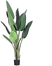 """BOWCORE 59"""" Planta de Tiesto Palmera Ave del paraíso Palm viajeros árbol Artificial En Base de 6"""" Gran Sala de Estar 150cm Artificial de Seda Bird of Paradise (Size : 150cm)"""