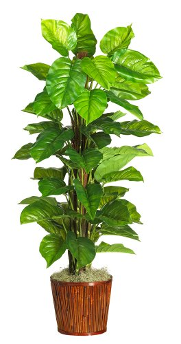 (Nearly Natural 6594-05 Large Leaf Philodendron Decorative Silk Plant, 63-Inch, Green)