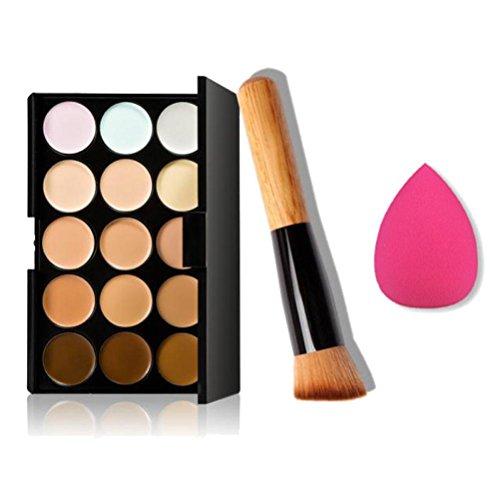 Ninasill Clearance 15 Colors Makeup Concealer Contour Palette + Water Sponge Puff + Makeup Brush (Multicolor)