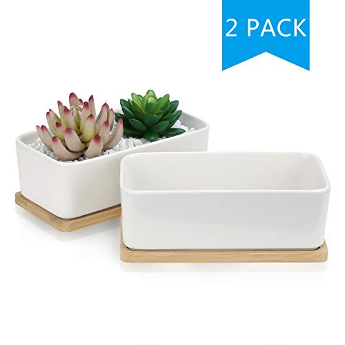 Succulent Pots,OAMCEG 6.5 Inch Rectangular Ceramic Planters,Set of 2 White Cactus Container, Bonsai Pots, Flower Pots with Drainage Hole/Bamboo Tray(Plants NOT Included)