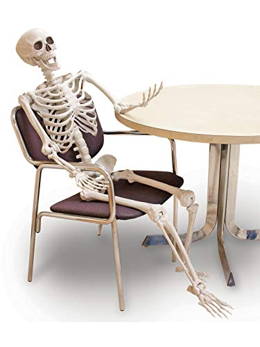 Forum Novelties 5' Posable Skeleton Party -
