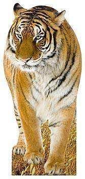 Tiger Standee with Sound
