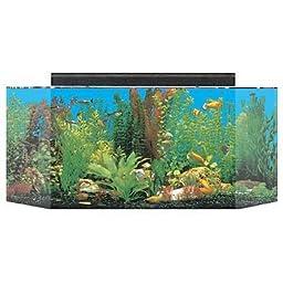 SeaClear 26 gal Flat Back Hexagon Acrylic Aquarium Combo Set, 36 by 12 by 16\