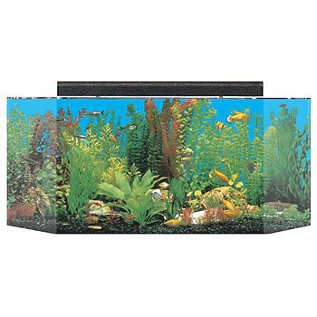 SeaClear 26 gal Flat Back Hexagon Acrylic Aquarium Combo Set, 36 by 12 by 16'', Black by SeaClear