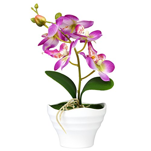 Decorative Purple Silk Artificial Phalaenopsis Orchid Flower with White Vase
