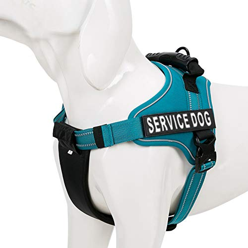 Chais Choice Service Dog Vest Harness Best Truelove Model with 2 Reflective Service Dog Patches and Sturdy Handle. Matching Padded 3M Reflective Leash Available (Medium, Blue)