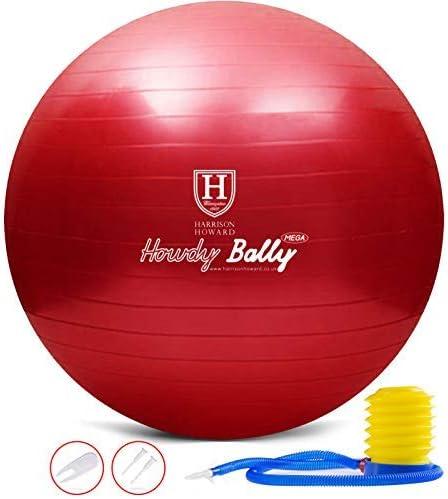 Harrison Howard Mega Horse Play Ball Anti-Burst Giant Horse Ball Horse Soccer Ball 22 Inch-Scarlet Red