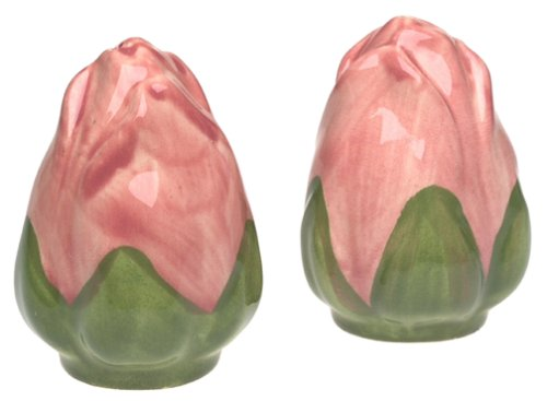 Franciscan Desert Rose Salt & Pepper - Desert Rose Set