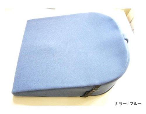 パットナム バランスクッション(ウェッジ) ブルー B004MYKJ88 ブルー