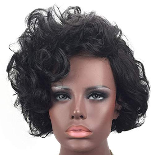 Search : Exvogue Short Curly Shaggy Wavy Fashion Wig for African American Women Dark Brown Synthetic Hair Sexy Ladies Women's Wig Heat Resistant Capless Halloween Costume Wigs Changeable Hairstyle
