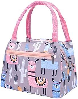 Qunanen Universal Print Stripe Picnic Carry Case Thermal Portable Lunch Bag