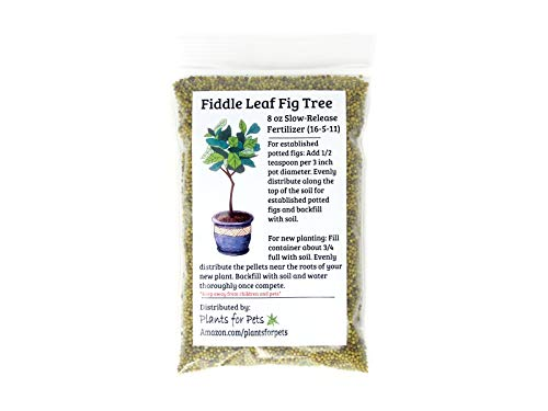 Fiddle Leaf Fig Tree Fertilizer (Slow-Release Pellets) Ficus Plant Food | Improves Leaves/Branches | Potted Indoor Trees Treatment by Plants for Pets (Best Soil For Fiddle Leaf Fig)