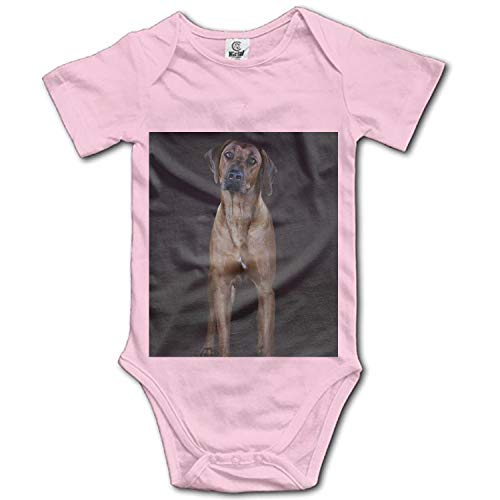 KSLIDS Baby Beautiful Picture of The Dog Cotton Bodysuits
