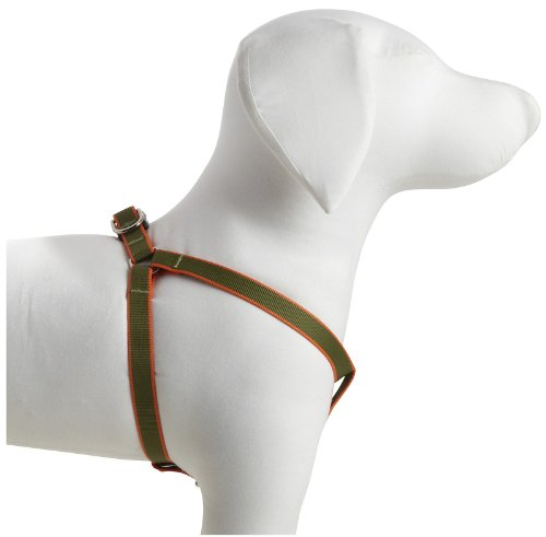"Harry Barker Chelsea Harness - Green & Orange - 5/8"" webbing - Small 12"" - 18"""