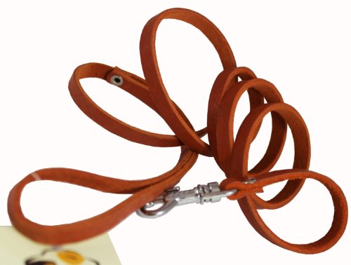 - 4' Genuine Leather Classic Dog Leash 3/8