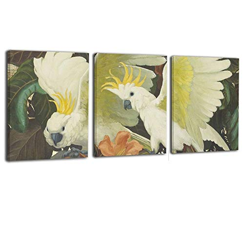 Warm-Tone Art Parrots Couple 3 Piece Canvas Prints Wall Art Oil Paintings For Living Room Dinning Room Bedroom Home Office Modern Wall Decor 16×20 In X 3