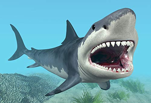 Yeele 9x6ft Great White Shark Backdrop Aquarium Seabed 3D Ocean Animal Shark Mouth Sharp Teeth Background for Photography Wildlife Predator Photo Booth YouTube Video Shoot Vinyl Studio Props