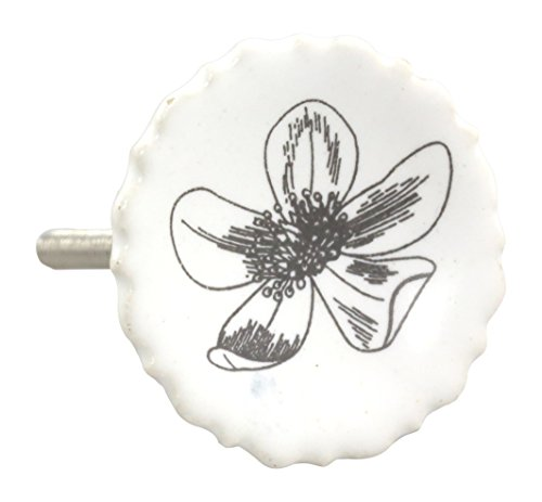 Charleston Knob Company Rustic Porcelain Knob, Set of 2, ...
