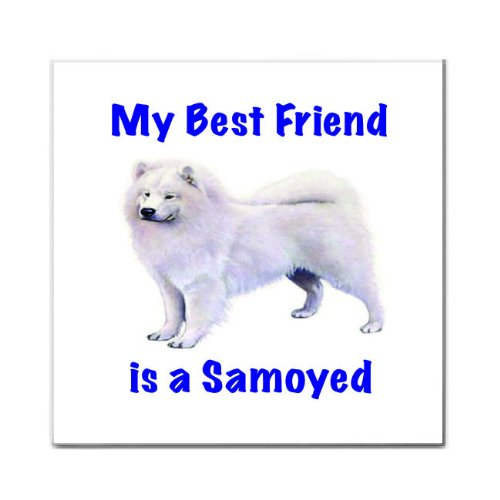 (My Best Friend is Samoyed Tile Trivet)