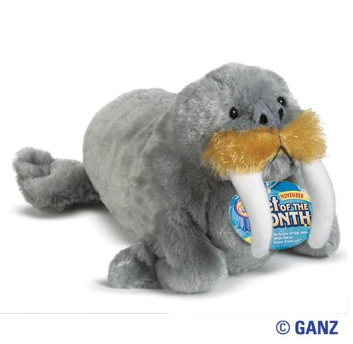 - Webkinz Walrus Pet Of The Month For November 2011 + Free 12-Pack Of Bubble Gum Scented Silly Bandz!!!