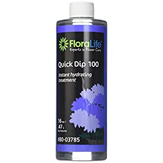 Floralife Smither Oasis Quick Dip 100 Instant Hydrating Treatment, 16 Ounce