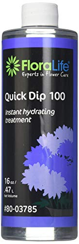 Floralife Smither Oasis Quick Dip 100 Instant Hydrating Treatment, 16 Ounce ()