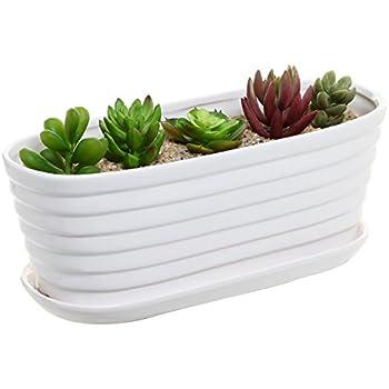 Amazon Com Gray Cement Rectangular Succulent Plant
