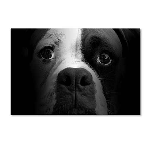 Boxer Pup by Lori Hutchison, 22x32-Inch Canvas Wall Art