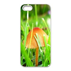 Okaycosama Funny IPhone 5,5S Cases Mushrooms and Grass for Guys, Iphone 5s Case, {White}